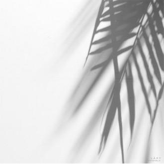 LAXY, Фотофон №51