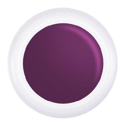 Patrisa Nail, Гель-краска №T8, фиолетовая