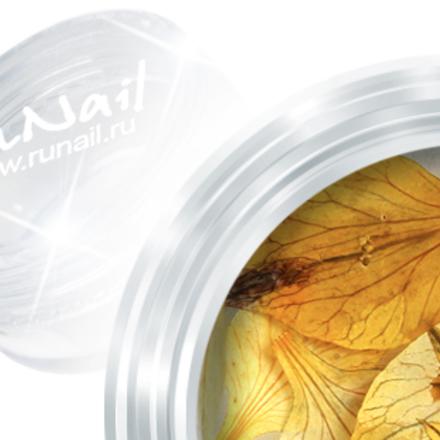 ruNail, дизайн для ногтей: сухоцветы (Dry flower) DRFL012 в пластиковой банке