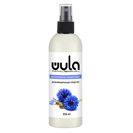 WULA Nailsoul, Дезинфицирующее средство, 200 мл фото