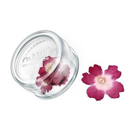 ruNail, дизайн для ногтей: сухоцветы 0464 (темно-розовый)