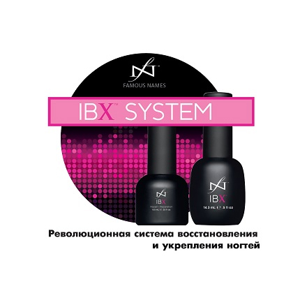 Famous Names, Брошюра c описанием IBX System A5