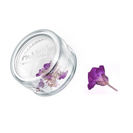 ruNail, дизайн для ногтей: сухоцветы 0460 (бордовый)