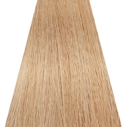 Купить Concept, Краска для волос Soft Touch 10.31