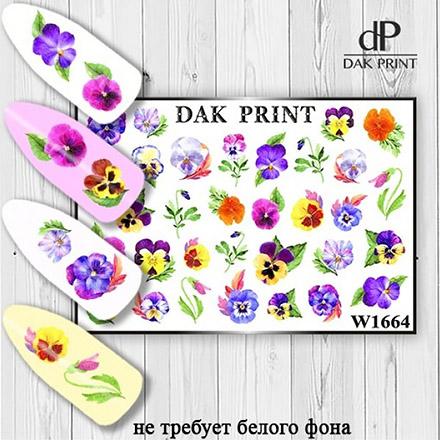 Купить Dak Print, Слайдер-дизайн №1664