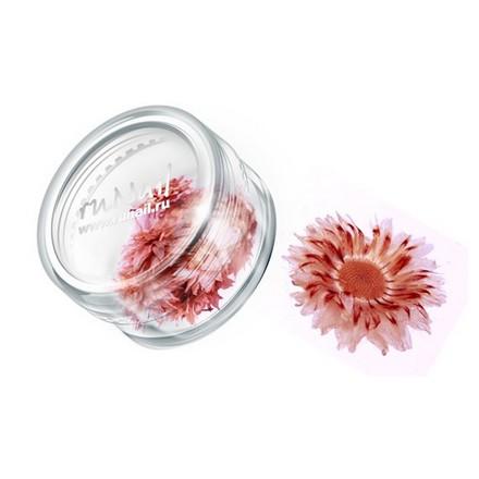 ruNail, дизайн для ногтей: сухоцветы 0469 (красный)
